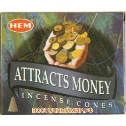 """Благовония в конусах Привлекающие Деньги (Attracts Money) """"HEM"""""""